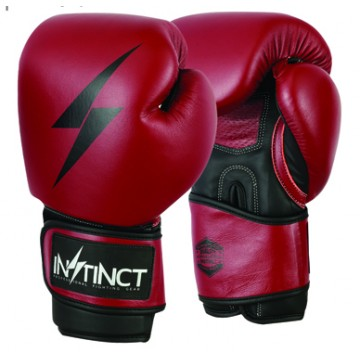 Spark Training Boxing Glove